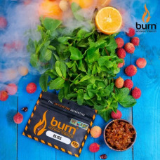 Табак для кальяна BURN BLISS 100g.
