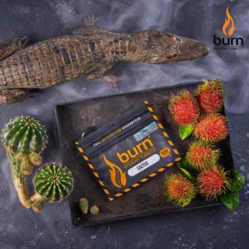 Табак для кальяна BURN CACTUS